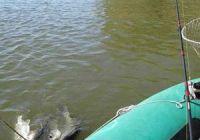 Ловля на джиг с лодки