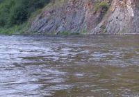 Какая рыба водится в Чулыме