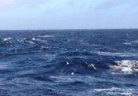 Какая рыба водится в Баренцевом море